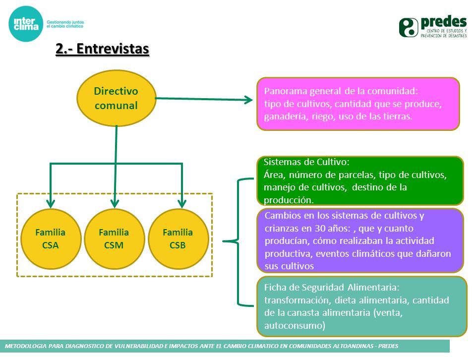 2.- Entrevistas Directivo comunal Panorama general de la comunidad: