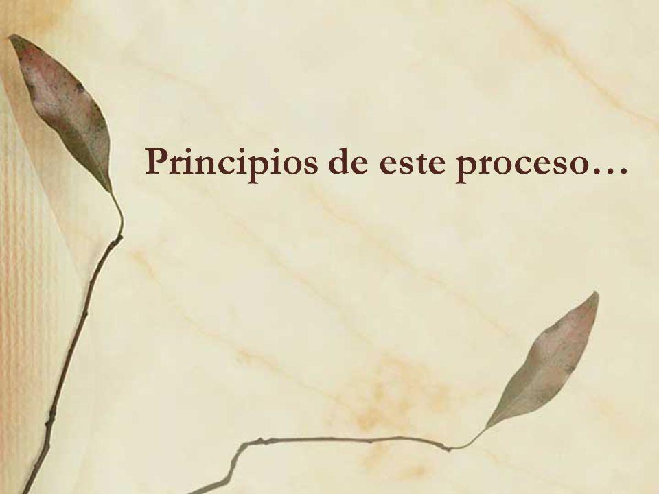 Principios de este proceso…