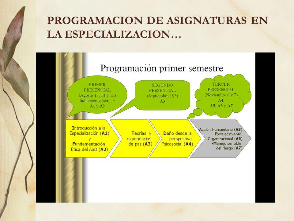 PROGRAMACION DE ASIGNATURAS EN LA ESPECIALIZACION…
