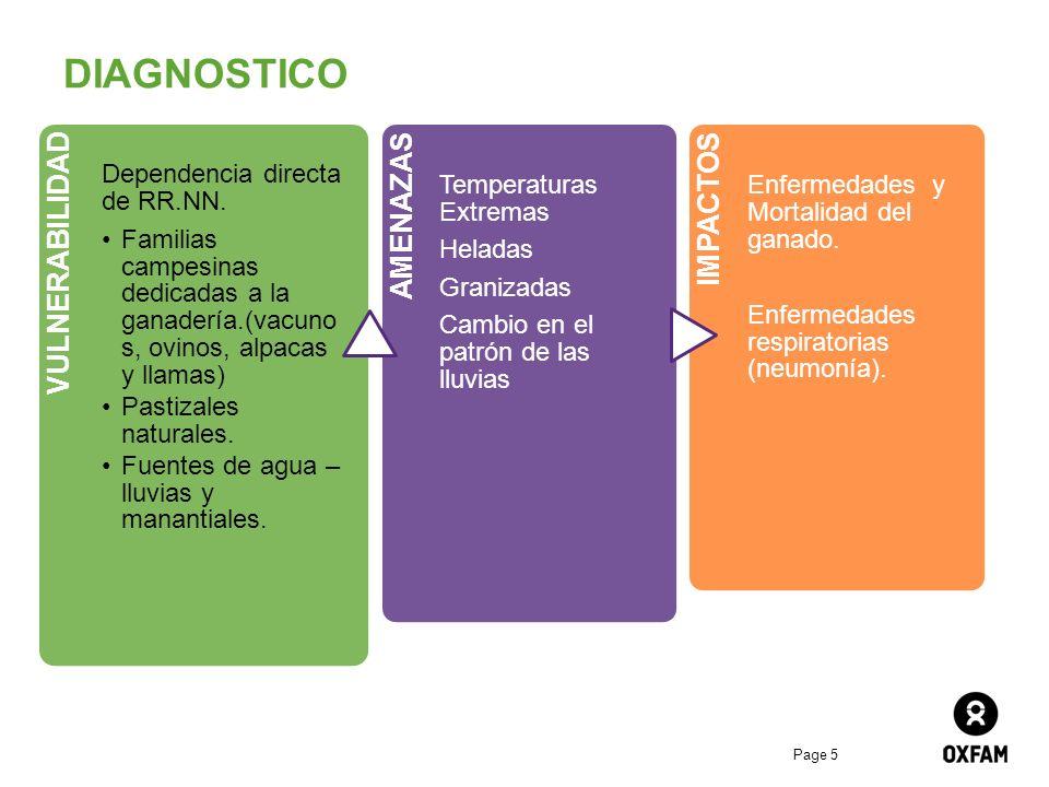 DIAGNOSTICO VULNERABILIDAD AMENAZAS IMPACTOS