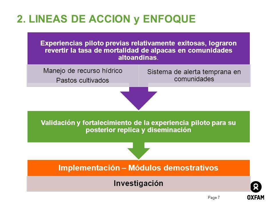 2. LINEAS DE ACCION y ENFOQUE