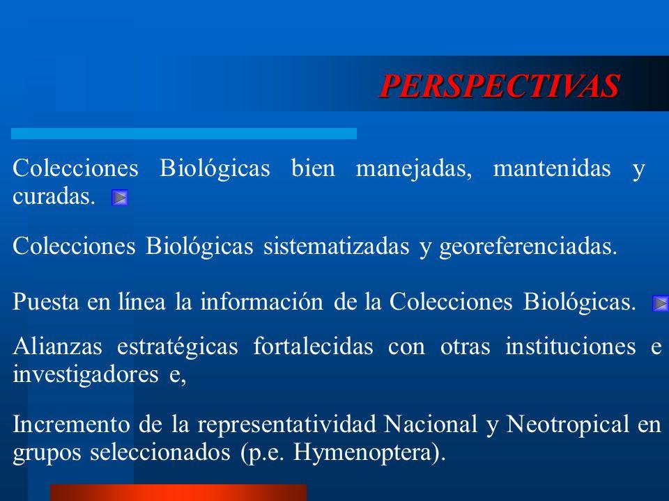 PERSPECTIVAS Colecciones Biológicas bien manejadas, mantenidas y curadas. Colecciones Biológicas sistematizadas y georeferenciadas.