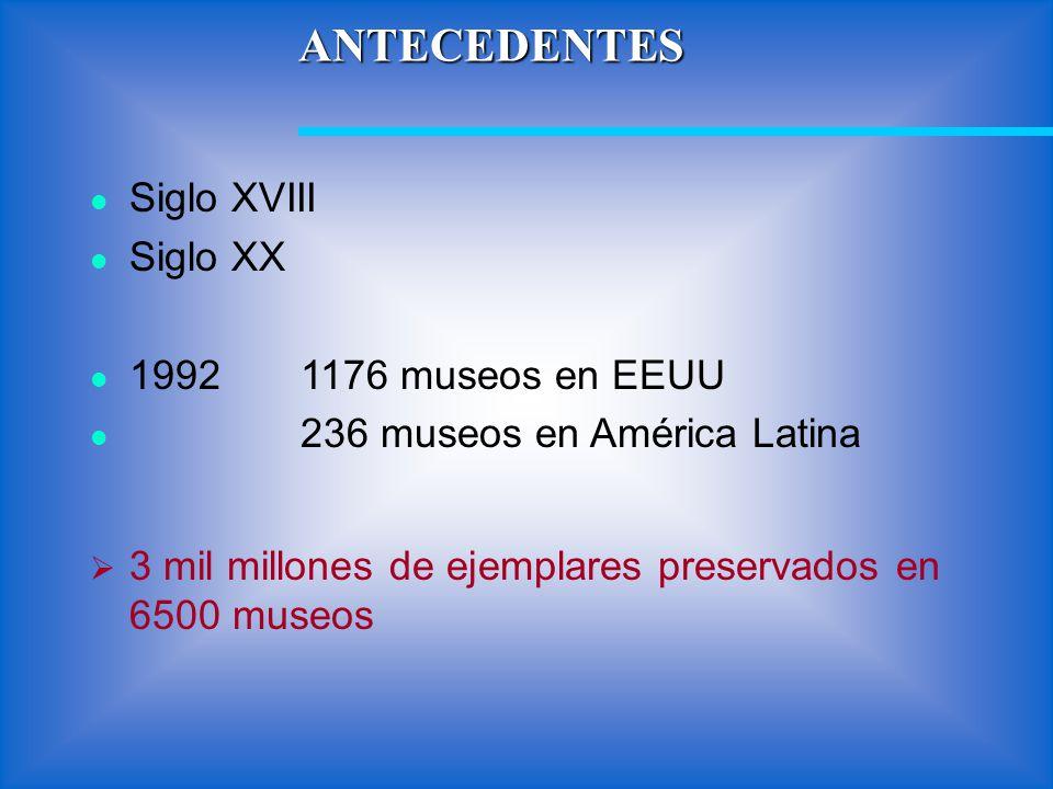 ANTECEDENTES Siglo XVIII Siglo XX 1992 1176 museos en EEUU