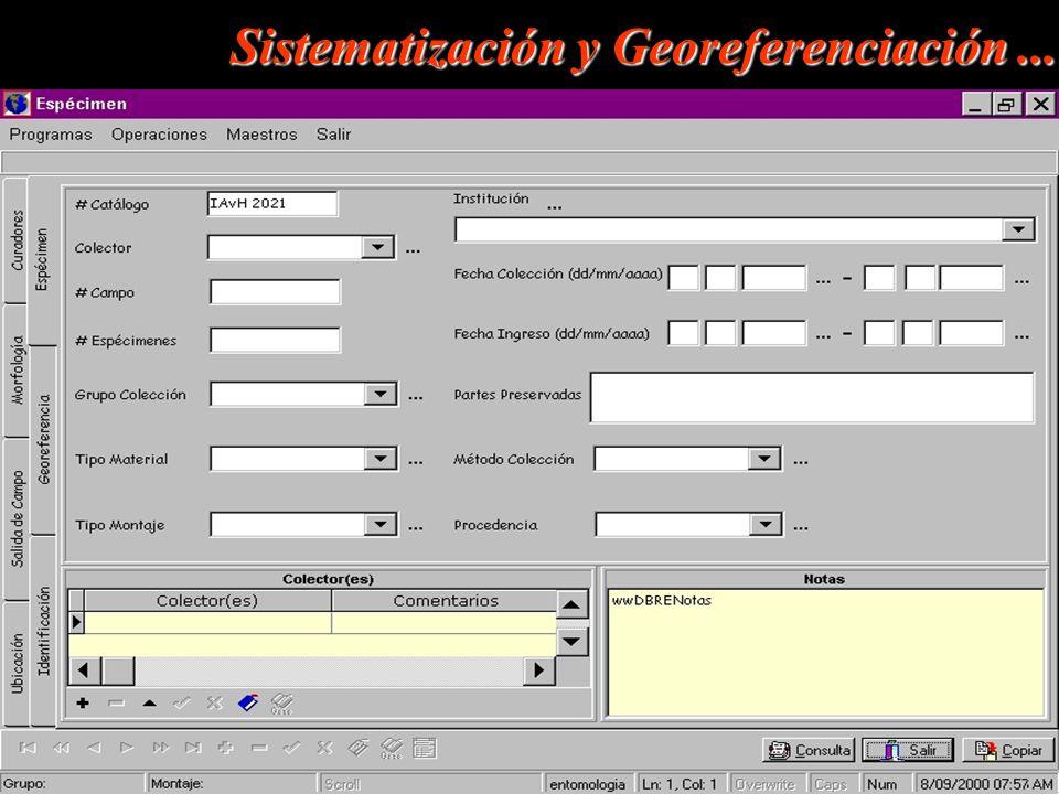 Sistematización y Georeferenciación ...