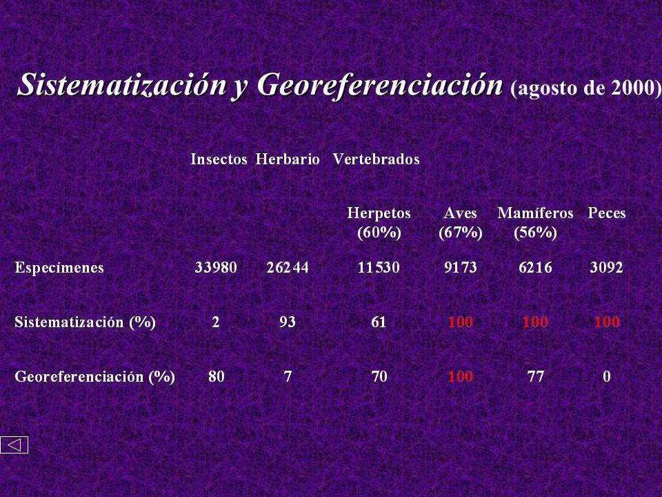 Sistematización y Georeferenciación (agosto de 2000)