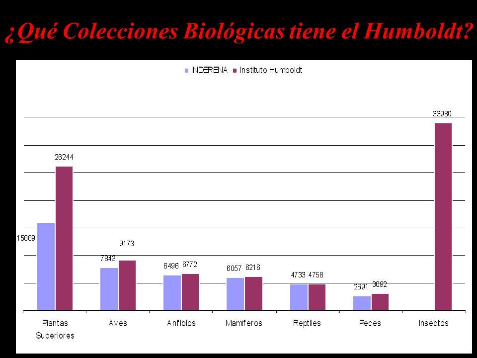¿Qué Colecciones Biológicas tiene el Humboldt