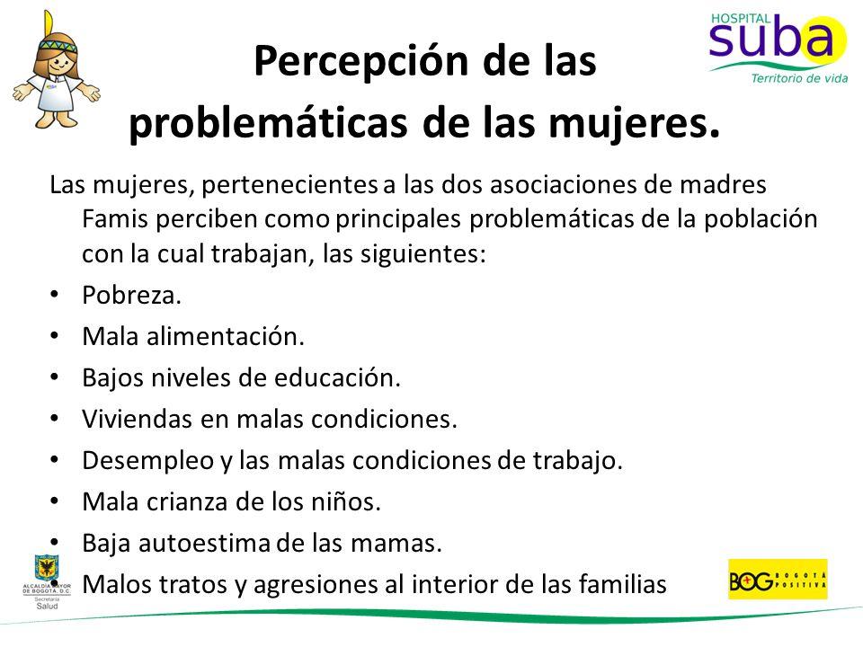 Percepción de las problemáticas de las mujeres.