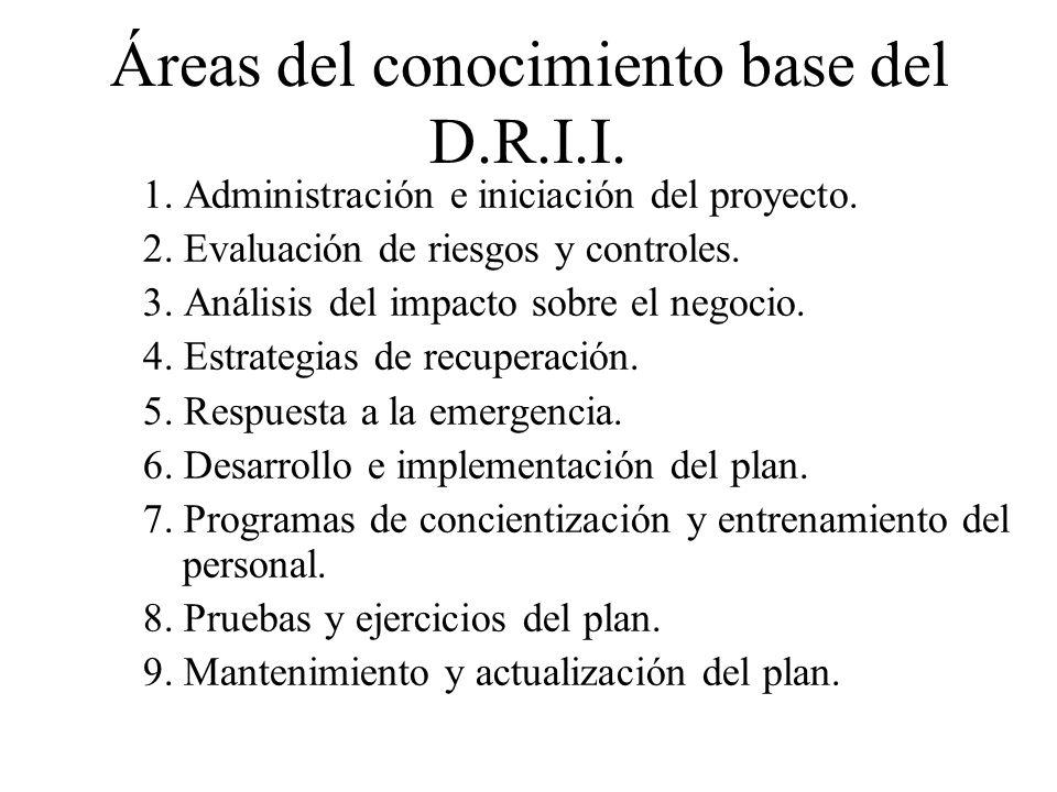 Áreas del conocimiento base del D.R.I.I.