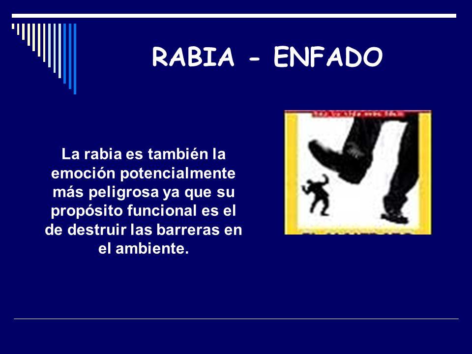 RABIA - ENFADO