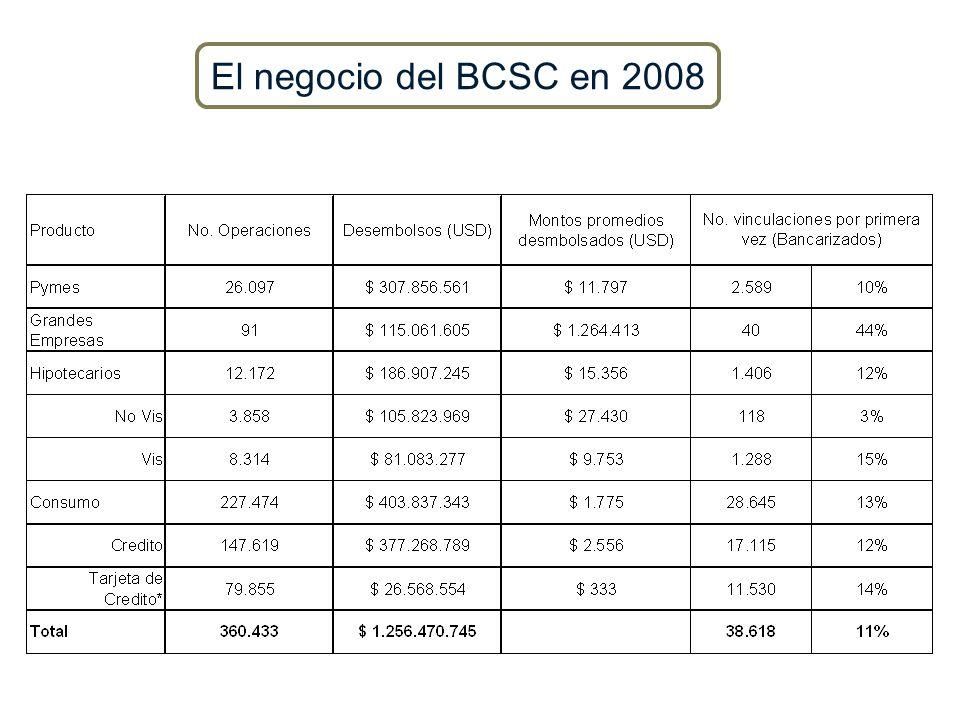 El negocio del BCSC en 2008 21