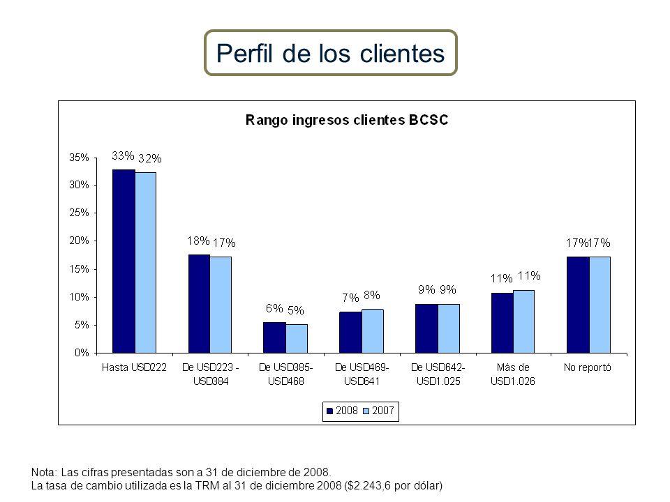 Perfil de los clientes Nota: Las cifras presentadas son a 31 de diciembre de 2008.