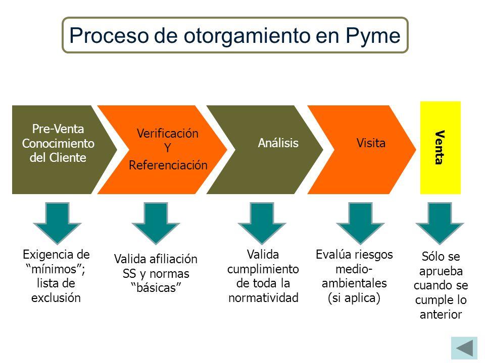 Proceso de otorgamiento en Pyme