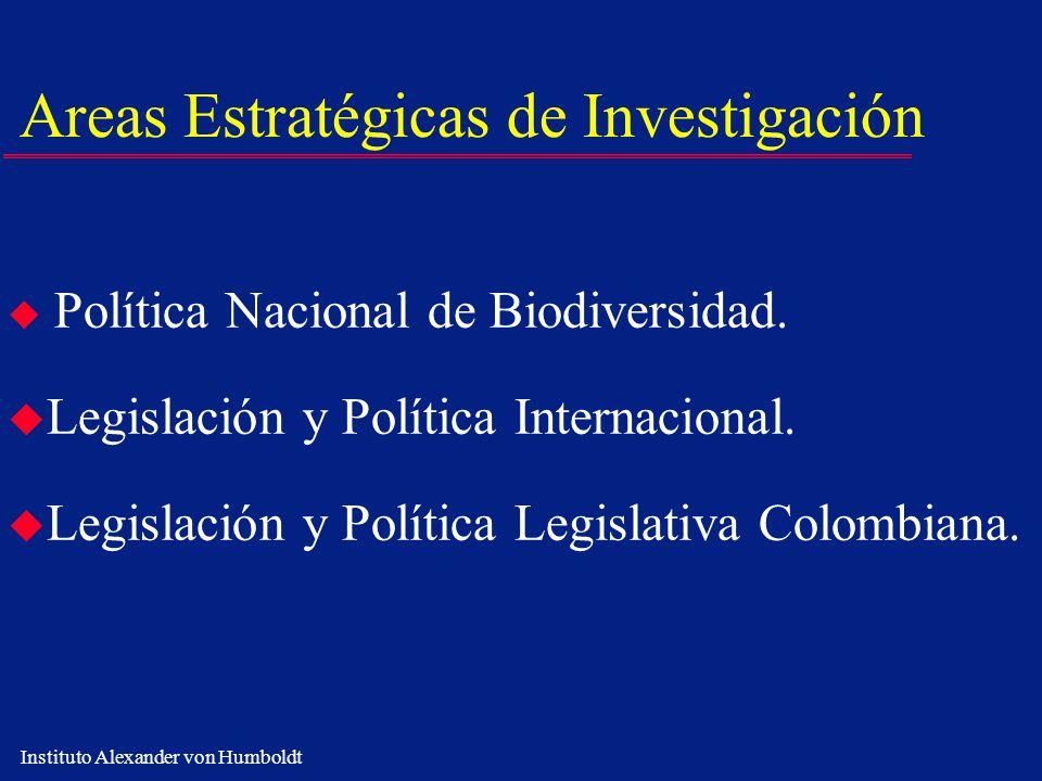Areas Estratégicas de Investigación