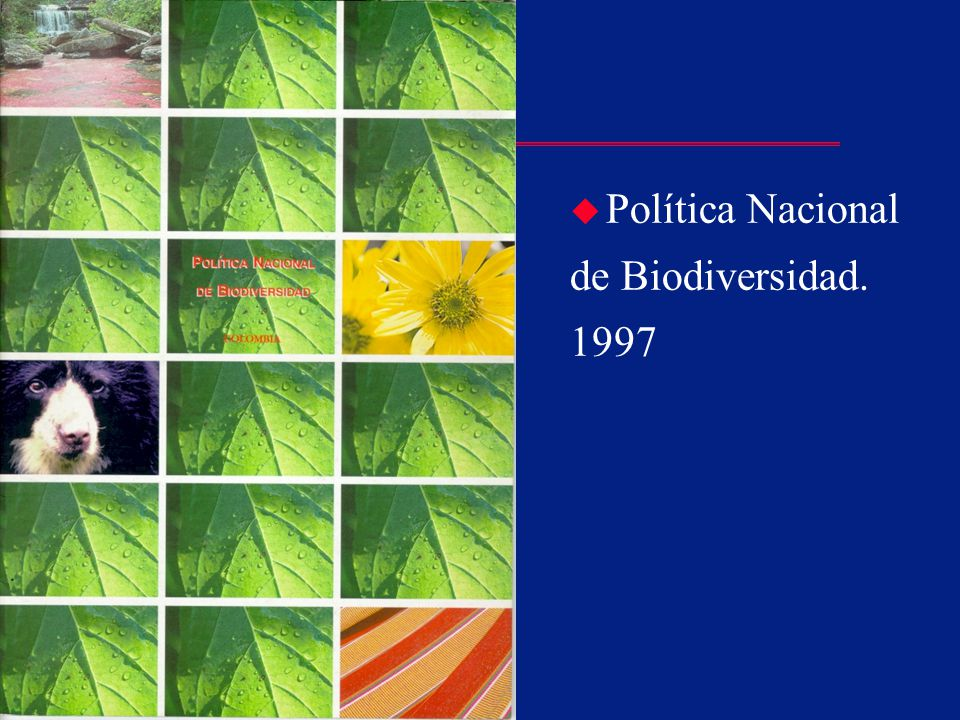 Política Nacional de Biodiversidad. 1997