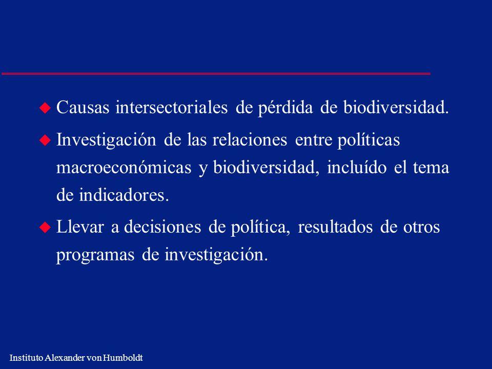 Causas intersectoriales de pérdida de biodiversidad.