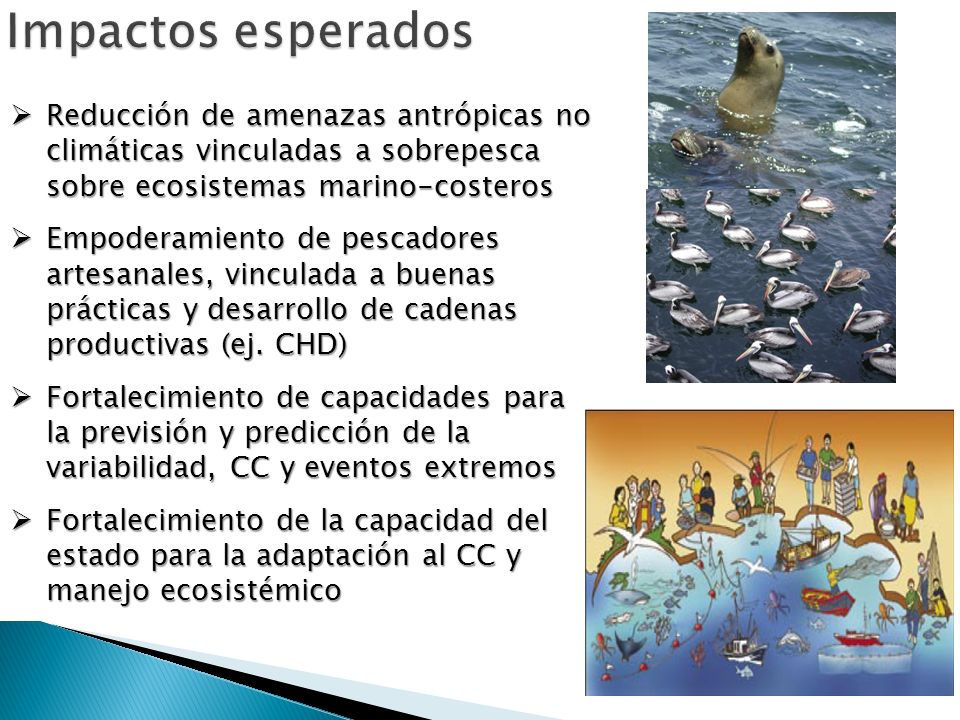 Impactos esperados Reducción de amenazas antrópicas no climáticas vinculadas a sobrepesca sobre ecosistemas marino-costeros.