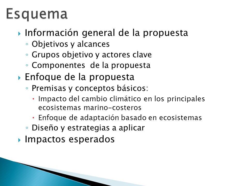 Esquema Información general de la propuesta Enfoque de la propuesta