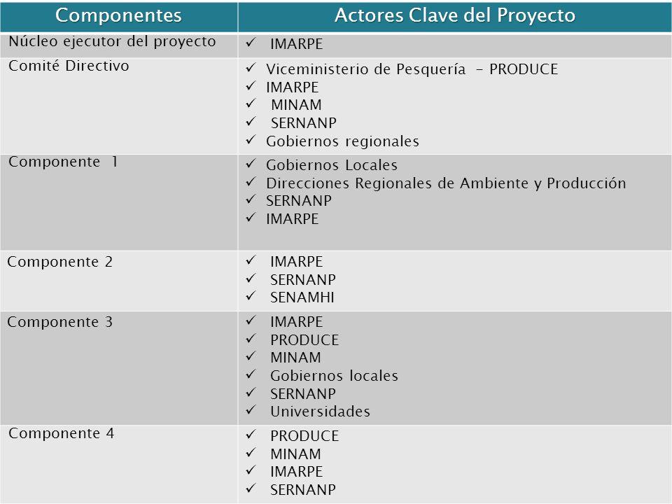 Actores Clave del Proyecto