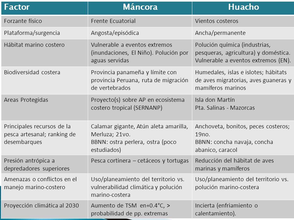 Factor Máncora Huacho Forzante físico Frente Ecuatorial