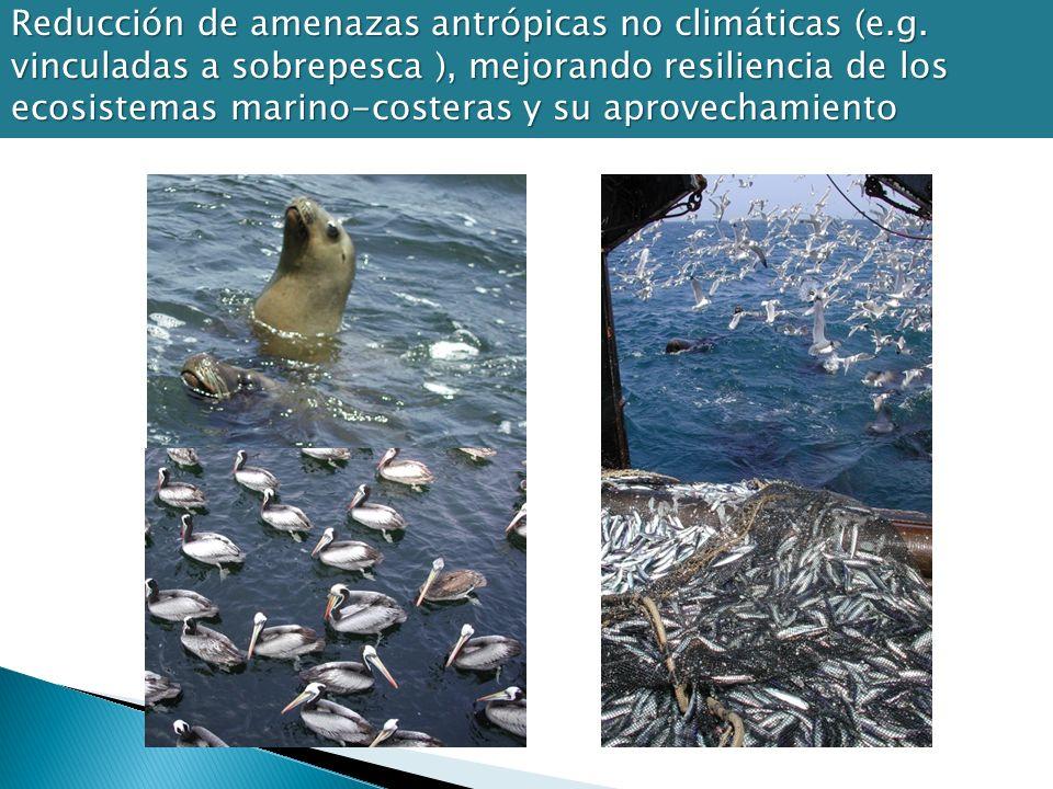 Reducción de amenazas antrópicas no climáticas (e. g