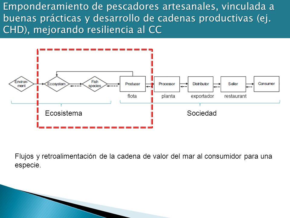 Emponderamiento de pescadores artesanales, vinculada a buenas prácticas y desarrollo de cadenas productivas (ej. CHD), mejorando resiliencia al CC