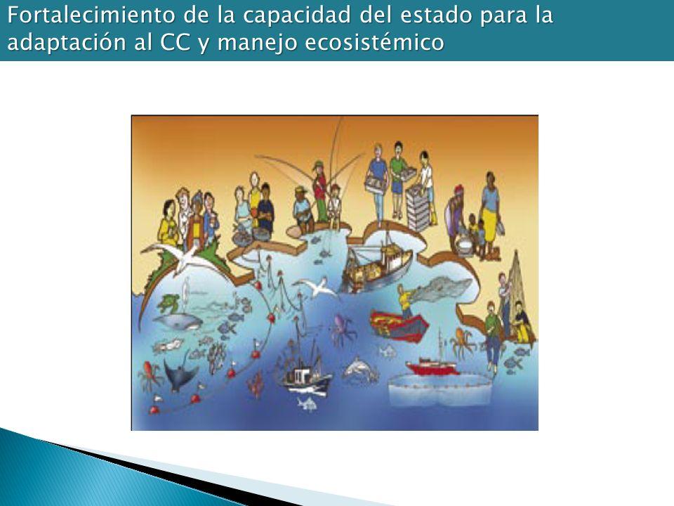 Fortalecimiento de la capacidad del estado para la adaptación al CC y manejo ecosistémico