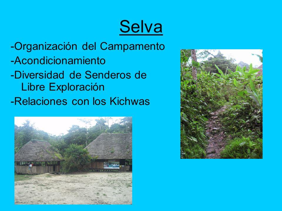 Selva -Organización del Campamento -Acondicionamiento
