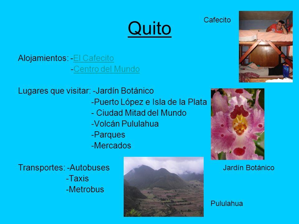 Quito Alojamientos: -El Cafecito -Centro del Mundo