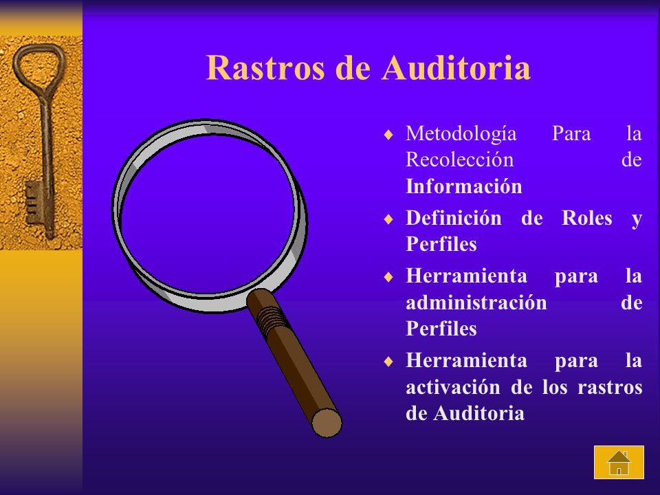 Rastros de Auditoria Metodología Para la Recolección de Información