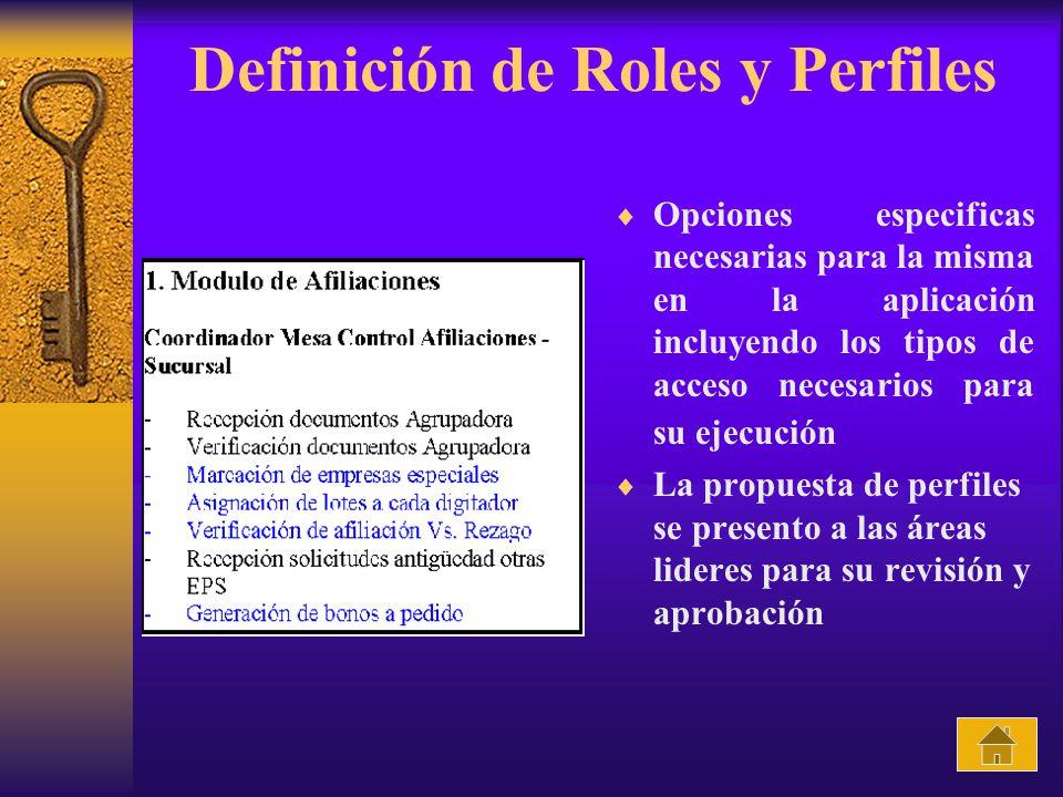 Definición de Roles y Perfiles