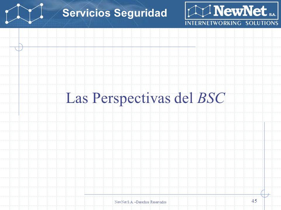 Las Perspectivas del BSC