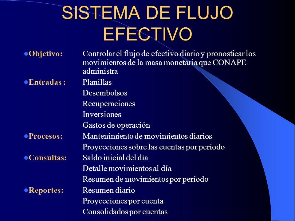 SISTEMA DE FLUJO EFECTIVO