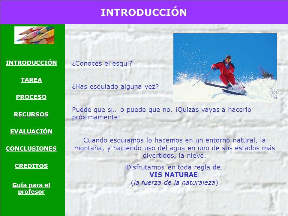 INTRODUCCIÓN ¿Conoces el esquí ¿Has esquiado alguna vez