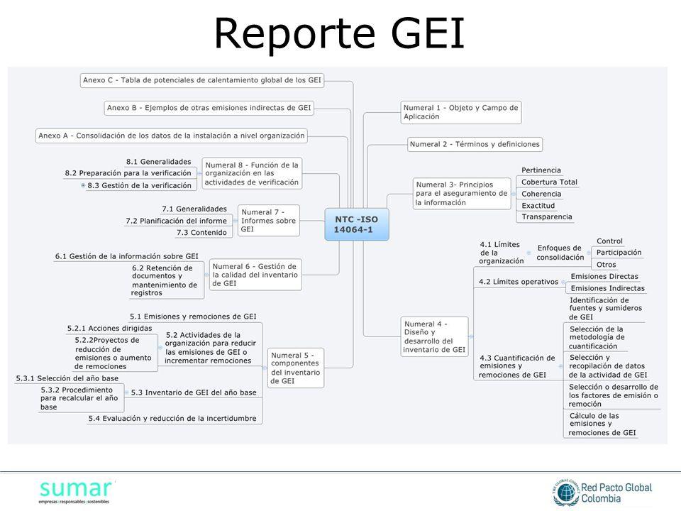 Reporte GEI
