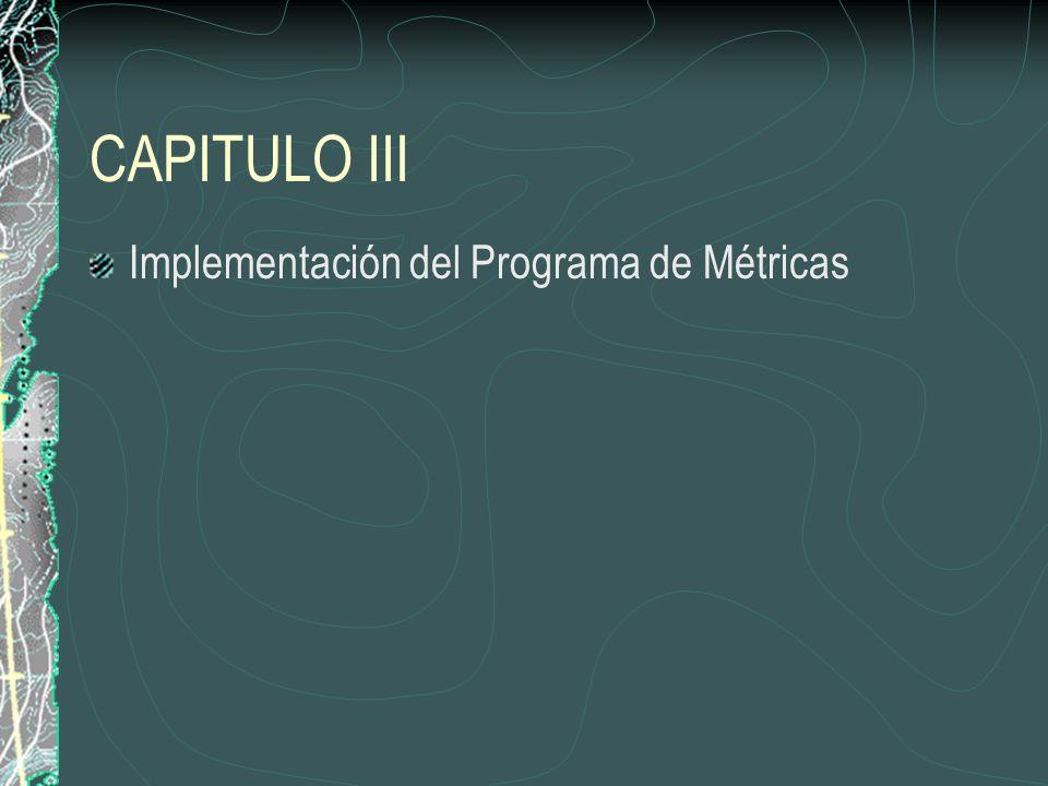 CAPITULO III Implementación del Programa de Métricas
