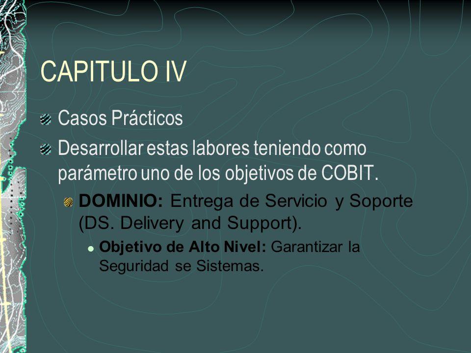 CAPITULO IV Casos Prácticos