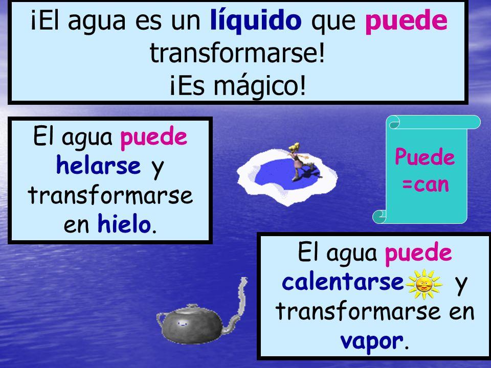 ¡El agua es un líquido que puede transformarse! ¡Es mágico!