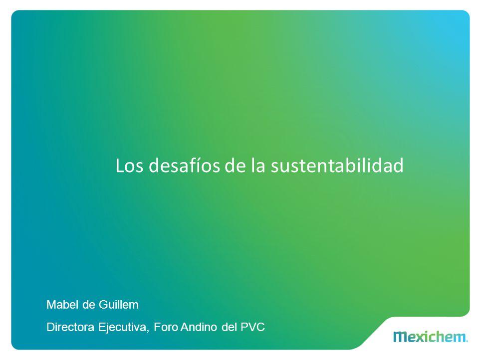 Los desafíos de la sustentabilidad