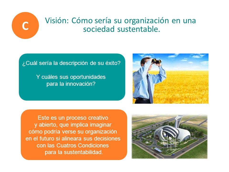 C Visión: Cómo sería su organización en una sociedad sustentable.