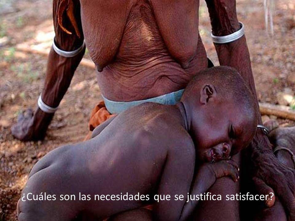 ¿Cuáles son las necesidades que se justifica satisfacer