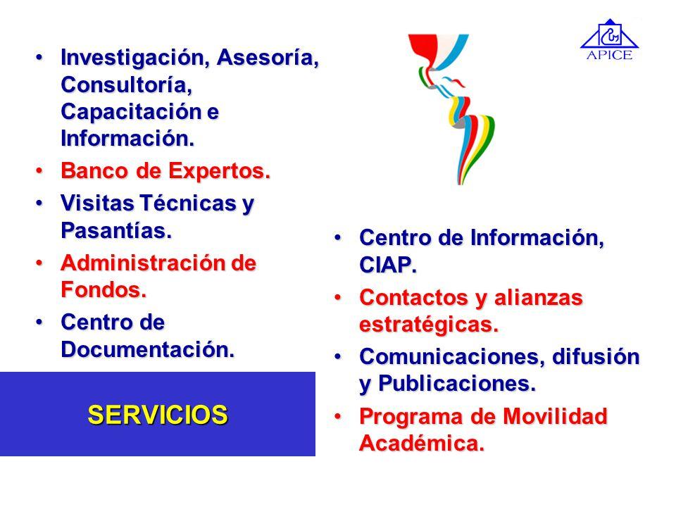 Investigación, Asesoría, Consultoría, Capacitación e Información.