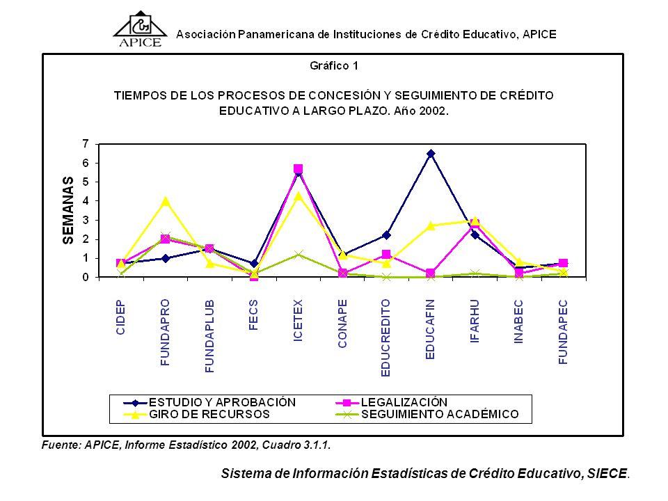 Fuente: APICE, Informe Estadístico 2002, Cuadro 3.1.1.