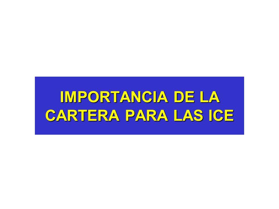 IMPORTANCIA DE LA CARTERA PARA LAS ICE