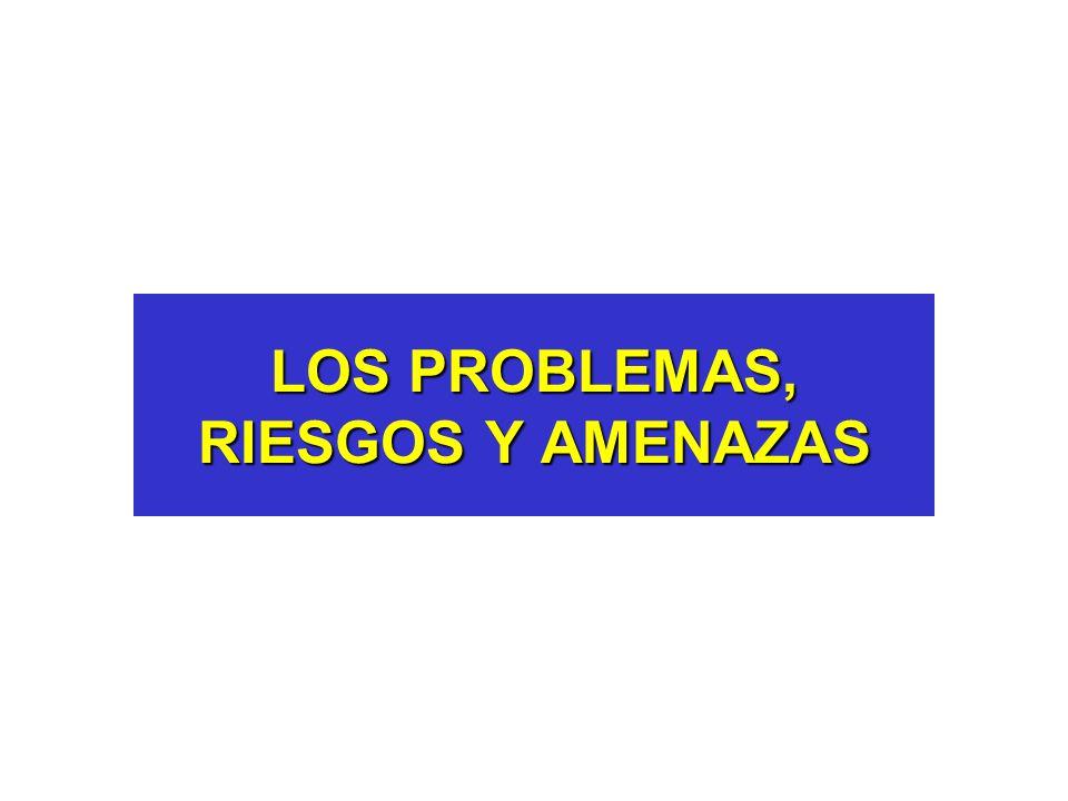 LOS PROBLEMAS, RIESGOS Y AMENAZAS