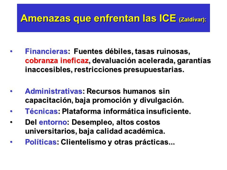 Amenazas que enfrentan las ICE (Zaldívar):