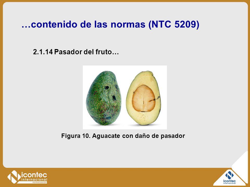 …contenido de las normas (NTC 5209)