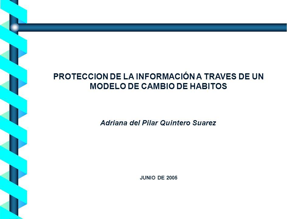 PROTECCION DE LA INFORMACIÓN A TRAVES DE UN