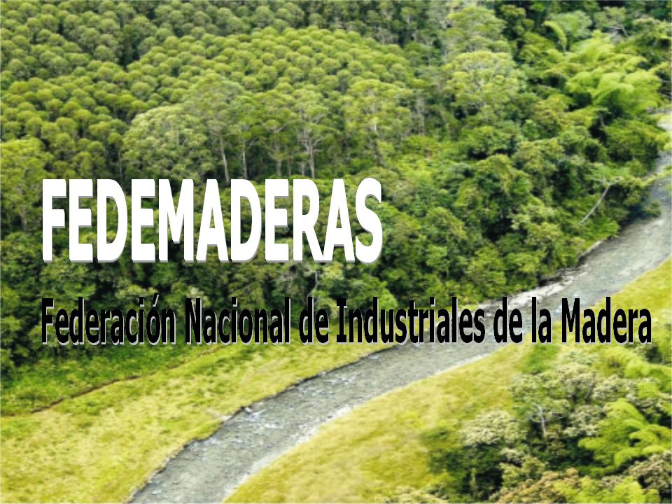 LA INDUSTRIA FORESTAL EN COLOMBIA