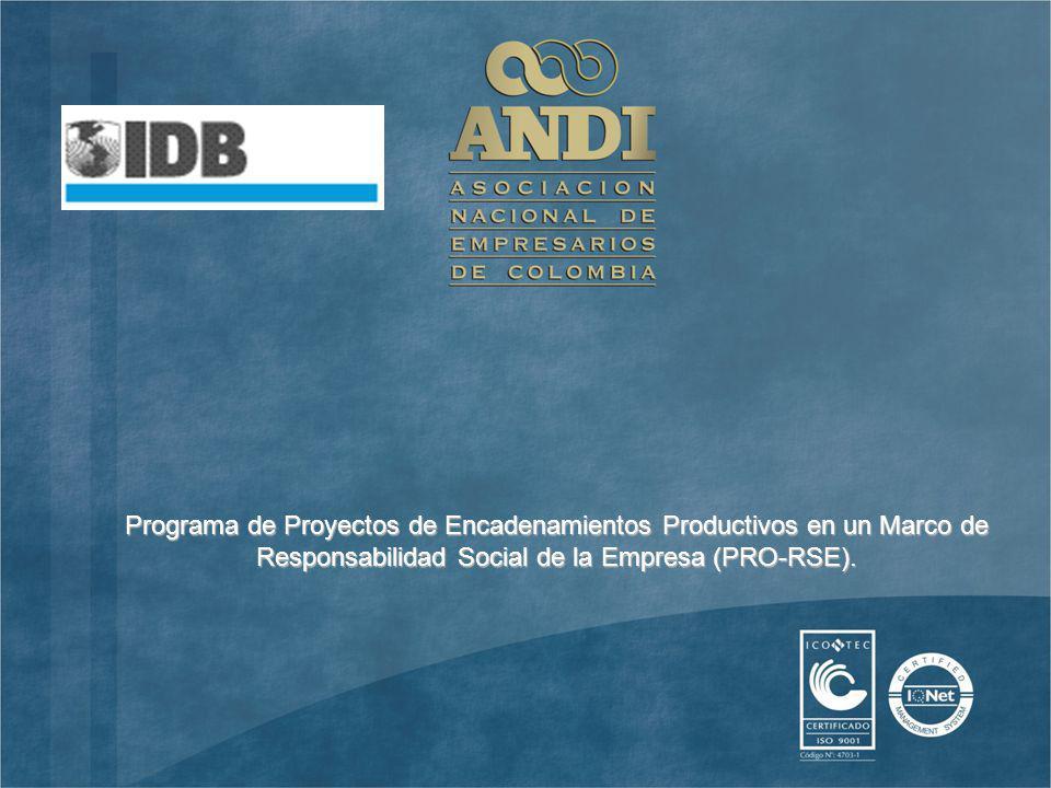 Programa de Proyectos de Encadenamientos Productivos en un Marco de Responsabilidad Social de la Empresa (PRO-RSE).