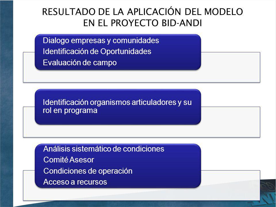 RESULTADO DE LA APLICACIÓN DEL MODELO EN EL PROYECTO BID-ANDI